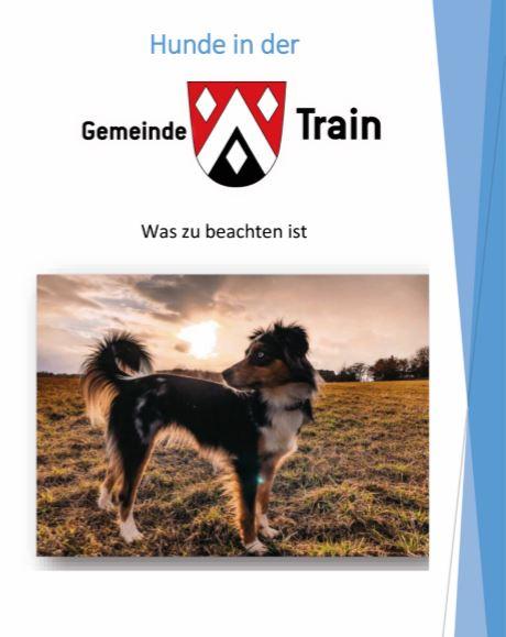 Hunde in der Gemeinde Train