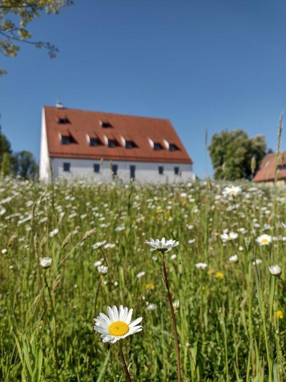 Zehentstadl mit Blühwiese